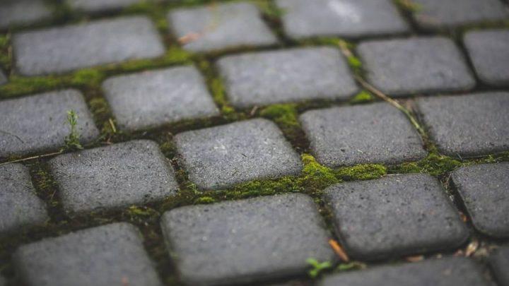 Как убрать мох на брусчатке